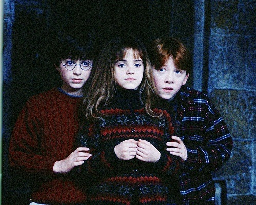 Twitter image 1656795 by aaron s on - Ron weasley and hermione granger kids ...