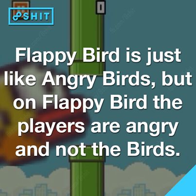 angry birds, funny, lol and Flappy Bird