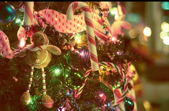candycane, christmas, decorations and lighting