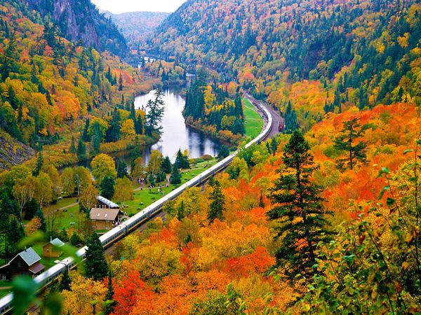 autumn, beautiful, colors, fall, landscapes, leaves, lovely, railway, train, trees, agawa canyon