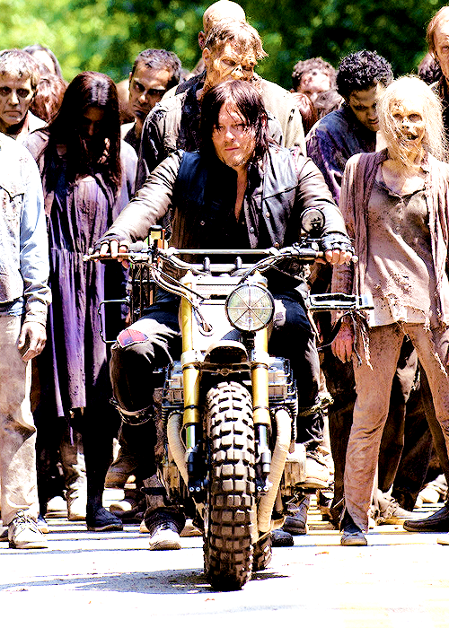 daryl dixon, norman reedus and twd