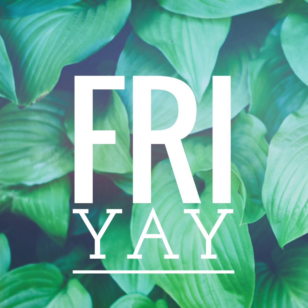 app, background, easel, font, friday, green, greenery, plant, qotd, quote, quotes, sayings, text, typography, wallpaper, we heart it, words, yay, Photo Editor, friyay, fri yay, easel app