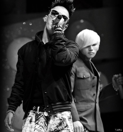 big bang, black and white, taeyang, daesung