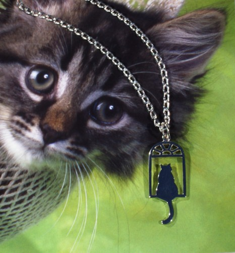cat, cat lovers necklace, cat necklace, feline, feline necklace