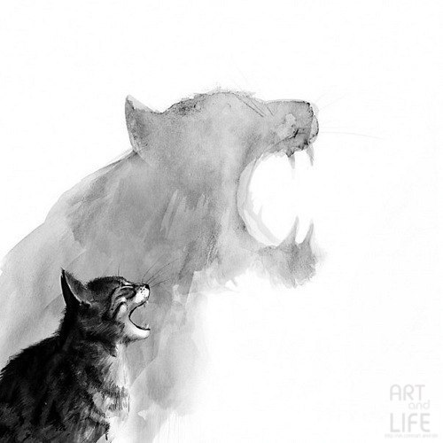 cats, blackwhite, art, illustration