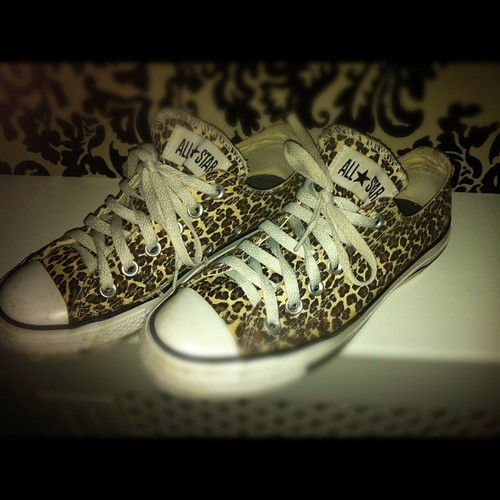 converse, all star, fashion, leopard