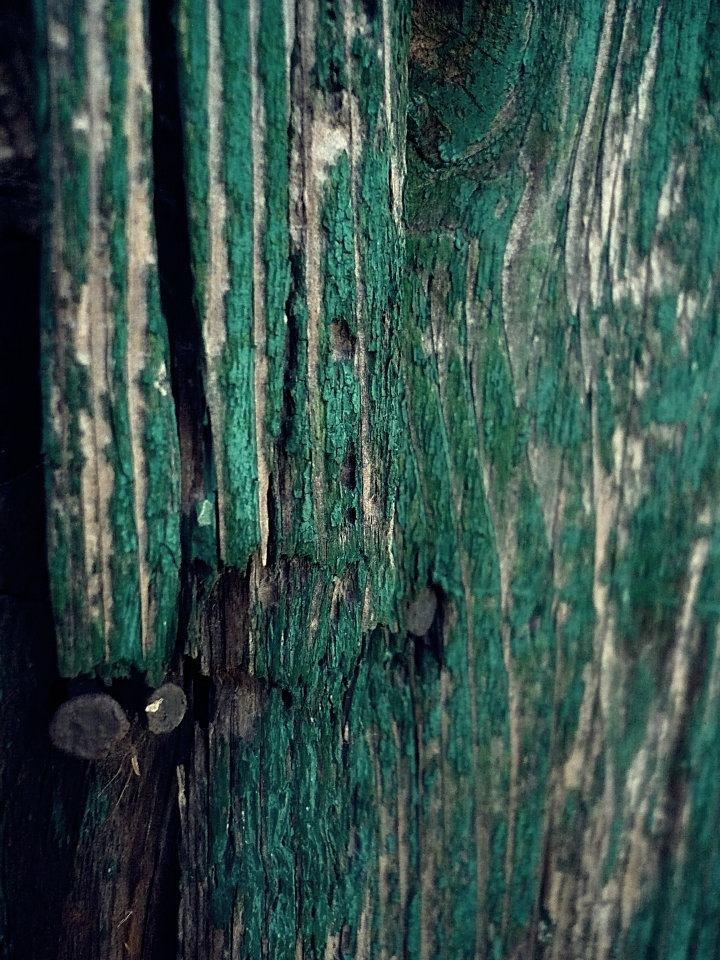 door, angle, wooden, green, cracked