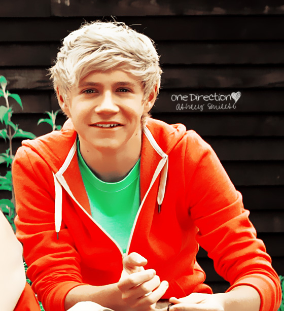 one direction, niall horan, cute, orange, blonde