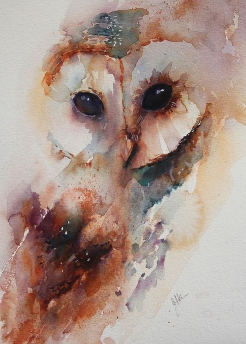 owl, drawing, illustration, bird