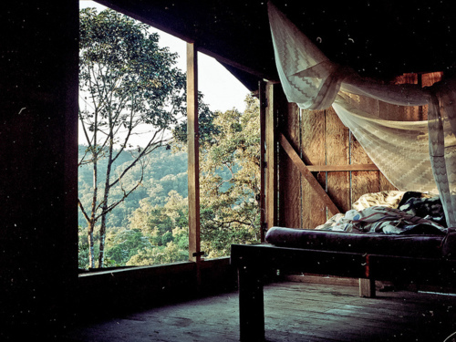 shelter, art, room, hypster, beautiful, photo, photography, nature, vintage, forest