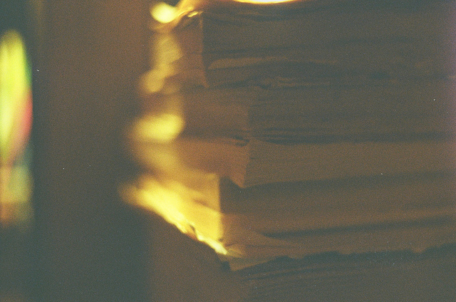 35 mm, animal, black and white, books, color
