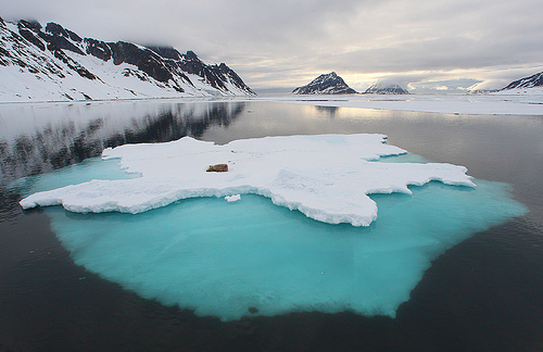 arctic, cold, ice, iceberg, lake