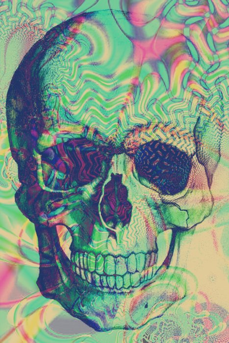 art, beautiful, poto, skull, vintage
