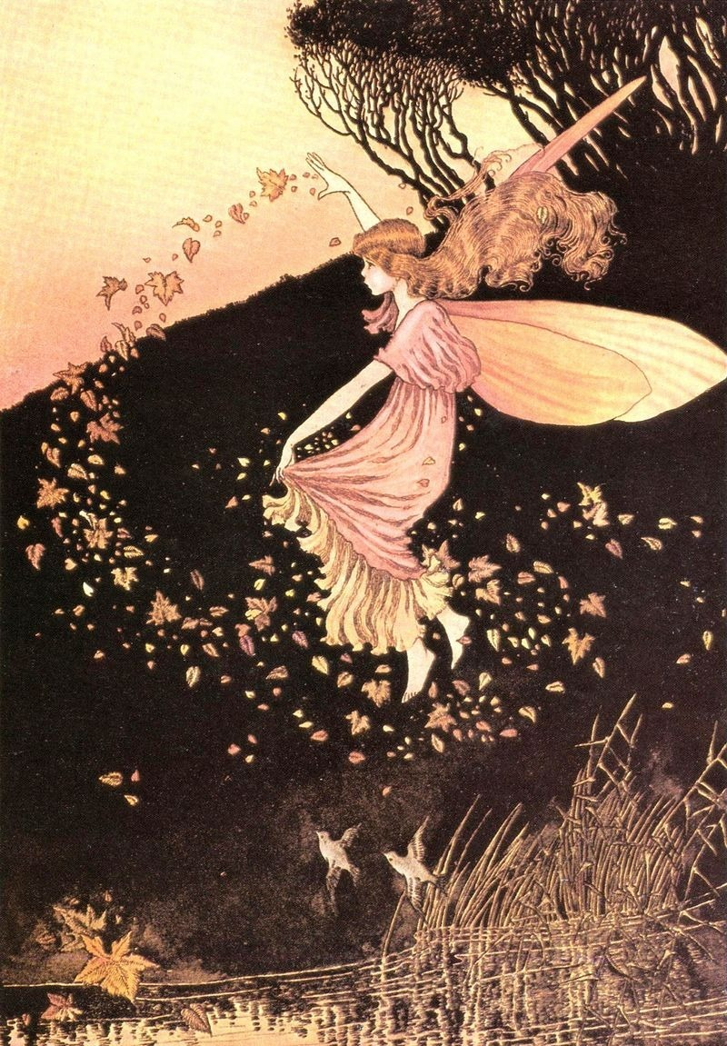 art, fairy, fairytale, ida rentoul outhwaite, illustration