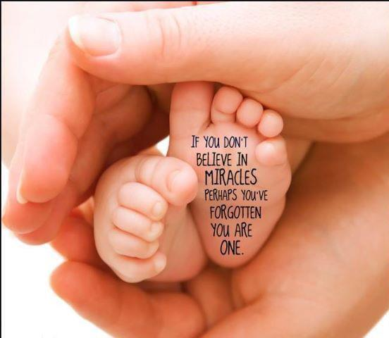 Babies Are Miracles Quotes