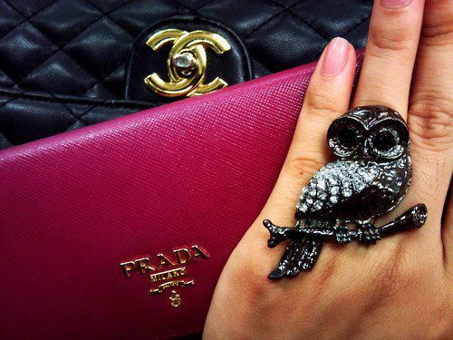 bags, chanel, fingers, hand, nail polish, owl, prada, ring