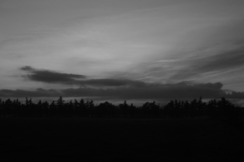 b&w, black & white, black and white, cloud, clouds, dark, darkness, forest, landscape, nature, night, photo, photography, place, sky