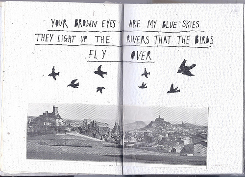 beautiful, birds, book, drawings, quote, typography