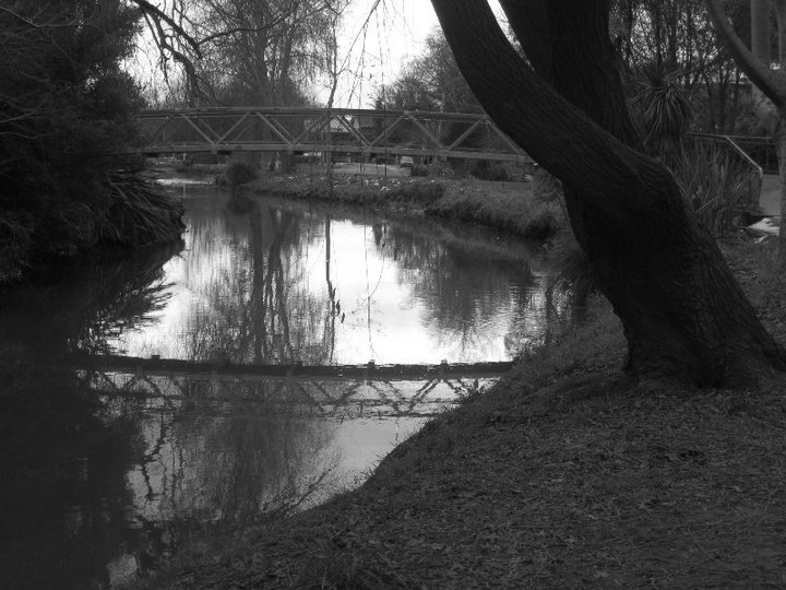 beautiful, black, black and white, branches, bridge