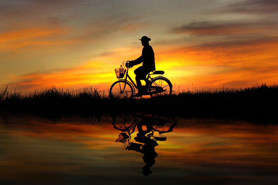 bicycle, man, nature, photography, sunlight