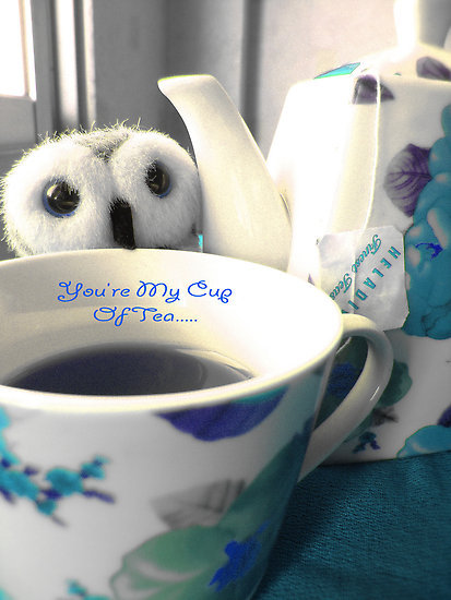 bird, cup, cup of tea, cute, flowers, owl, sweet, tea, teabag, teapot, toy
