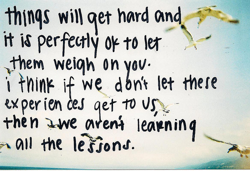 birds, experiences, lessons, life, perfect, quote, weigh, will get hard