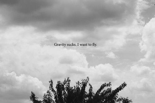 black and white, branches, fly, gravity, sky, sucks, text, tree