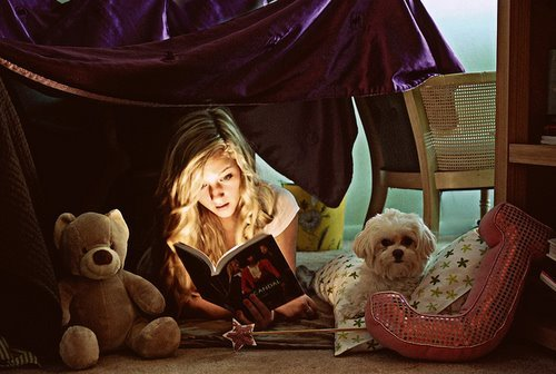 blue, book, books, colourful, cute, girl, girly, green, pink, puppy, reading, teddy bear, yellow