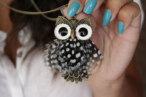 blue, fashion, feathers, jewelry, owl
