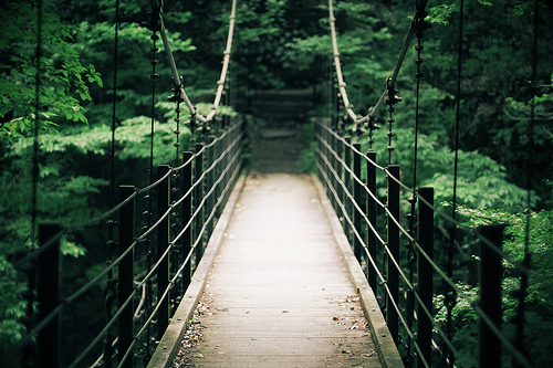 bridge, forest, nature, river, way