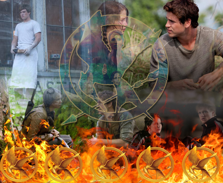 catching, everdeen, fire, gale, games