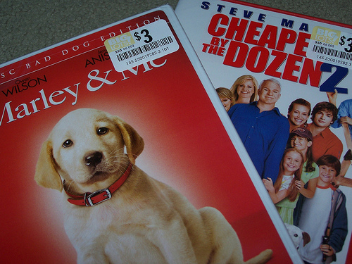 cheape by the dozen, marley & me, movie, photography