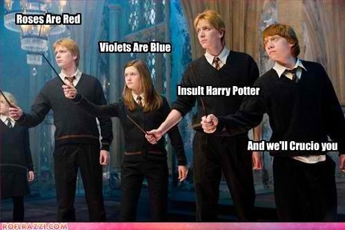 crucio, haha, harry potter, lol, weasleys