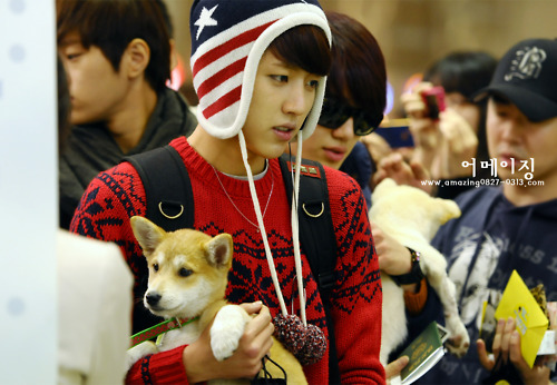 dog, infinite, korean, kpop, sungyeol