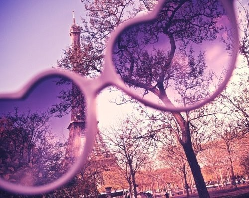 glasses, nature, paris, sunglasses