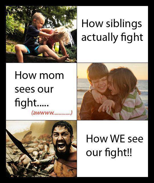 300, fight, funny, lol, siblings