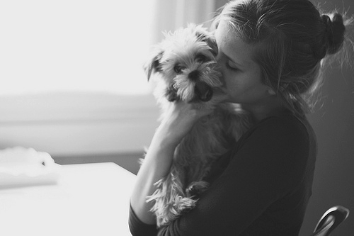 adorable, amazing, animal, beautiful, black and white, cute, dog, girl, hair, hand, happy, hug, kiss, like, love, smile, wonderful