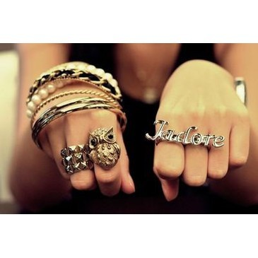 adorable, amazing, animal, bracelets, french, gorgeous, hand, jewlry, nice, owl, paris, pretty, ring, sexy, swag, vintage, wow