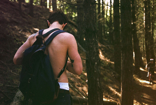 adventure, analog, beautiful, boy, forest