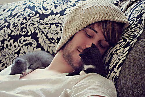alex gaskarth, all time low, boy, cat, cute