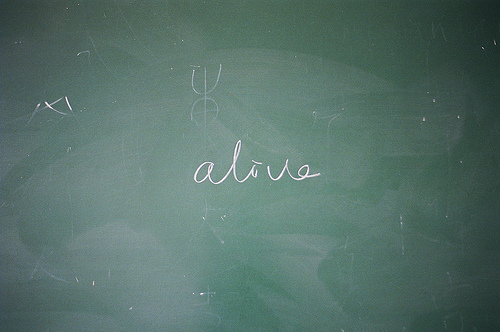 alive, art, blackboard, board, draw, green, ophidiophobic, text, typography, word, words, written