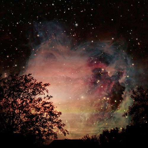 all me, amazing, animal, awesome, beautiful, beauty, clouds, colorful, colors, cool, cute, dollzi, galaxies, galaxy, gif, glamour, landscape, life, light, lights, love, luxury, nature, night, photo, photography, pretty, sky, stars, text, wonderful, wow