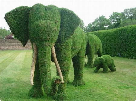 amazing, artwork, cool, elephants, grass