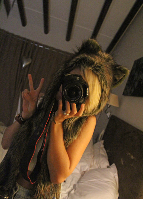 animal, beanie, blonde, canon, cute