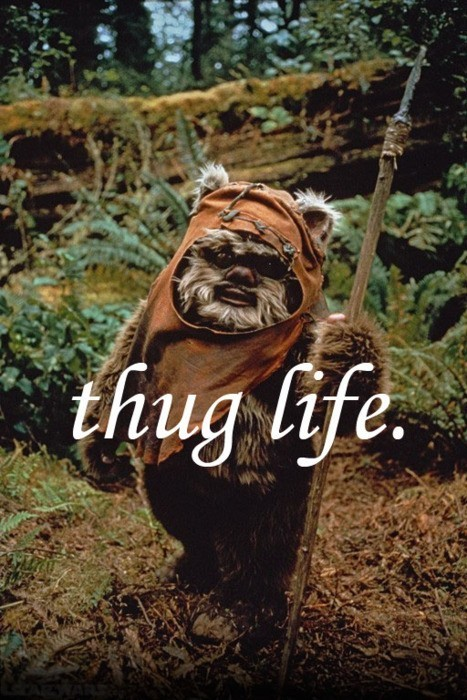 animal, bright, colourful, cute, ewok, forest, quote, star wars, nature, text, life, vintage, furry, wordtext, indie, thug, pretty, photography, hipster, word