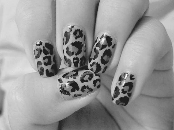 animal print, art, b&amp;w, black and white, fashion