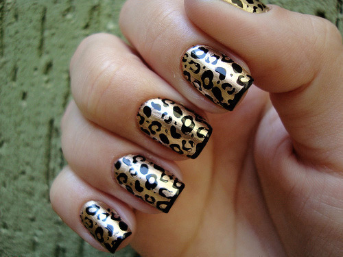 animal print, cute, girl, girly, grr
