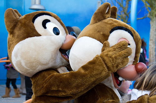 animals, chip and dale, chipmunks, disney, photography