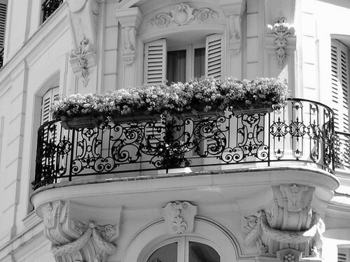 architecture, b&w, beautiful, black & white, black and white, cute, flower, flowers, luxury, nature, photo, photography, white, window