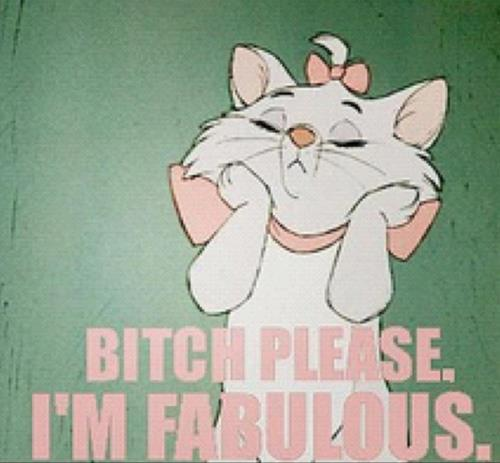 aristocats, bitch please, bow, cute, funny, kitten, kitty, pink